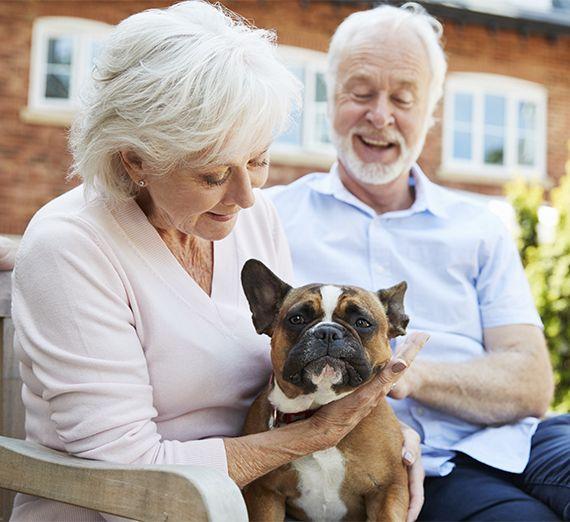 Experienced Lifetime Mortgage Advisor in Orpington